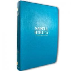 Biblia RVR60 Letra Trande tamaño manual