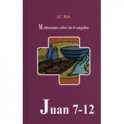 Meditaciones sobre los evangelios: Juan